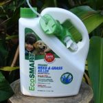 EcoSmart Weed and Grass Killer Review