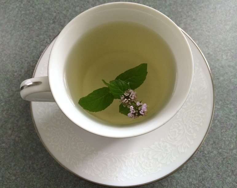 Mint leaves with purple flower in yellow colored tea in white porcelain tea cup on white porcelain saucer with lace design
