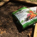 Miracle-Gro Potting Soil and Fungus Gnat Infestations