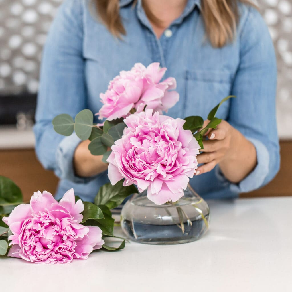 woman adding pink peonies flowers to glass vase