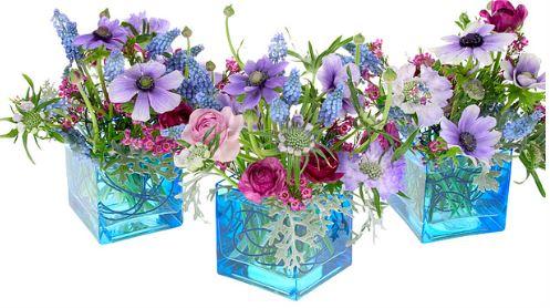 Flowers Vases