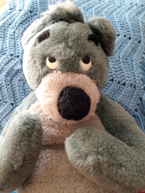 Baloo Old Stuffed Animal Dust Mites