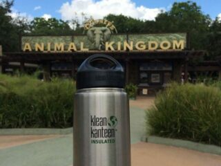 Klean Kanteen water bottle in front of disney animal kingdom sign