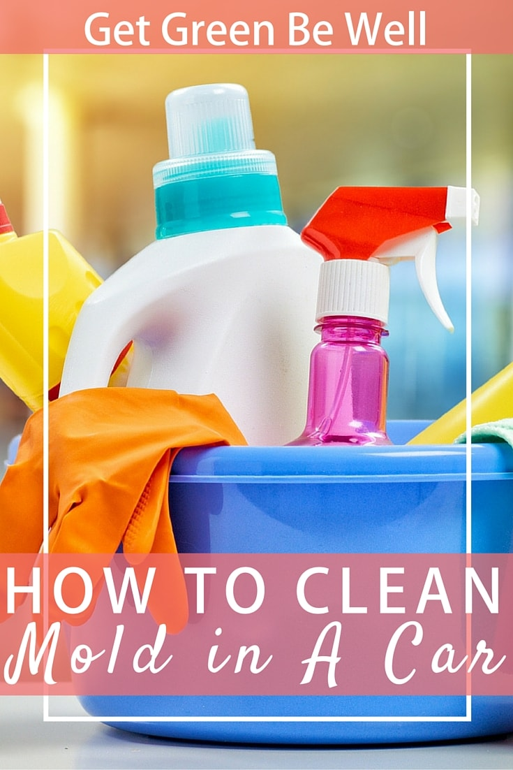 How to clean mold in a car get green be well dailygadgetfo Gallery