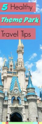 Five Theme Park Travel Tips