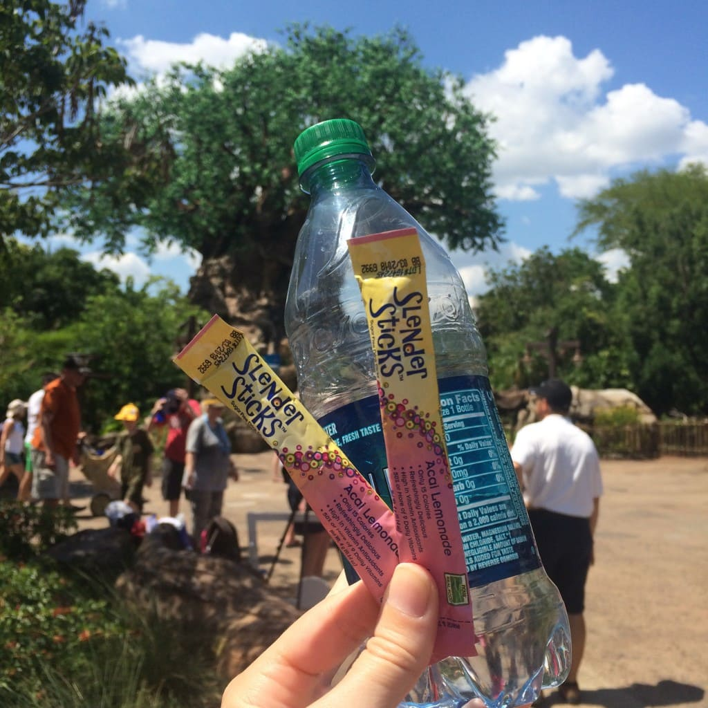 NOW Foods Slender Sticks Water Bottle