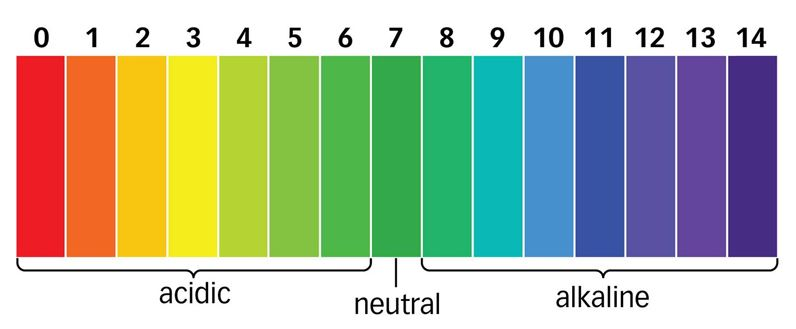 Acid Alkalaine Scale of Numbers
