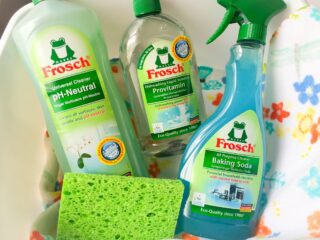 frosch green cleaners in bucket with green sponge