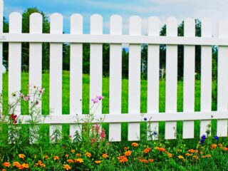 White wooden fence on green grass with flowers