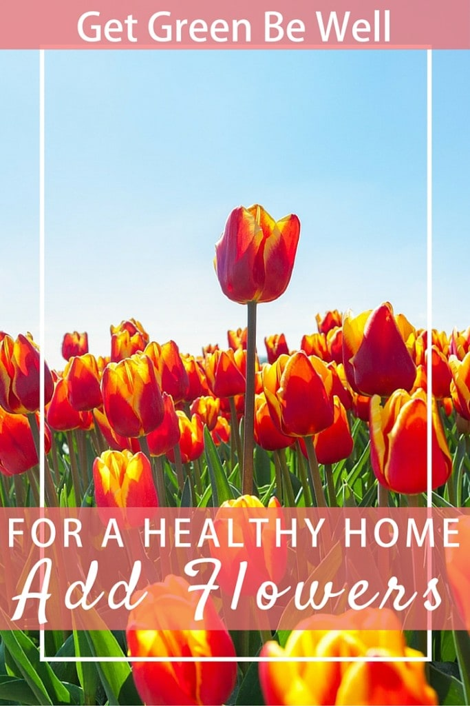 Add Flowers to Your Home for Happiness
