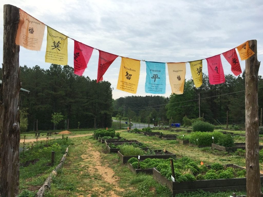 Honeysuckle Tea House Chapel Hill North Carolina NC Organic Local Eco Friendly