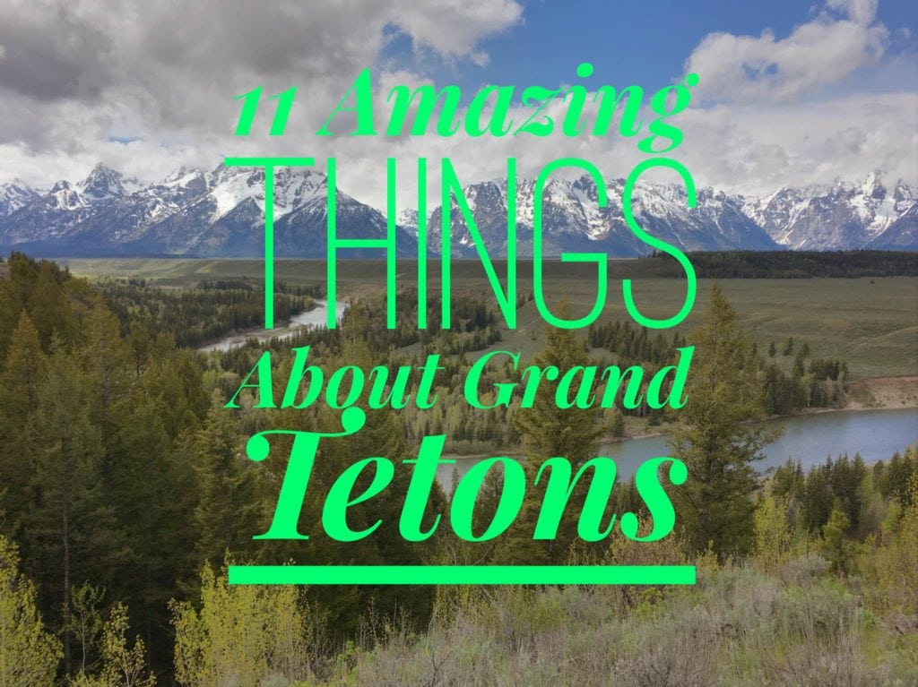11 Amazing Things About Grand Teton National Park in Wyoming