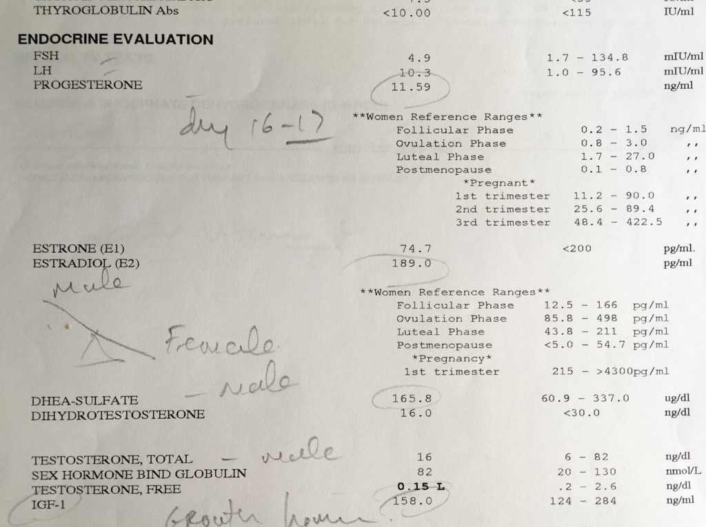 Hormonal Hell Blood Work Test Results