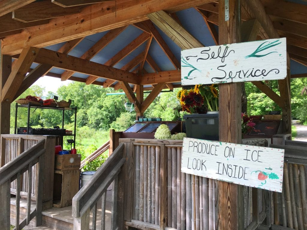 Flying Cloud Farm Roadside Stand in Fairview, NC is a self-service farm stand using the honor system. Buy produce grown using organic methods, and cut your own wildflower bouquet from the adjacent flower fields.