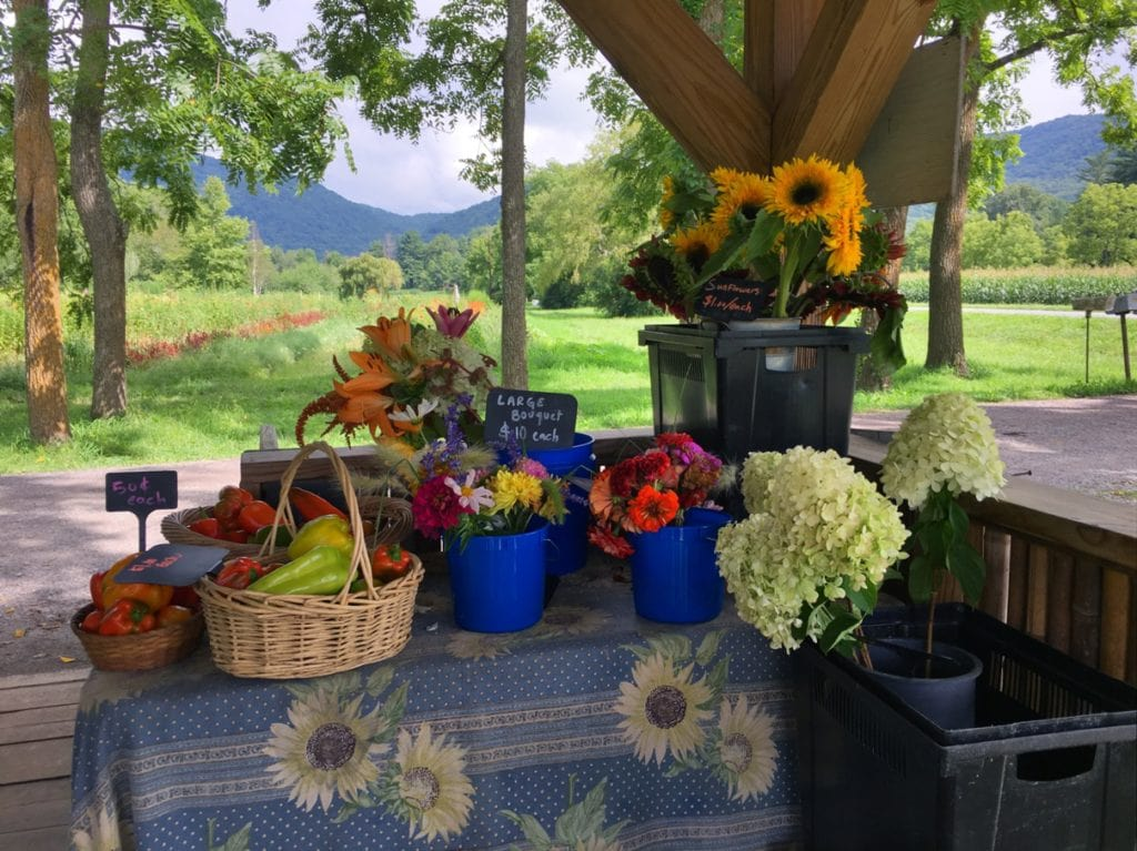 Flying Cloud Farm self-service roadside stand sells organically grown fresh cut flowers and produce on the honor system near Asheville, NC.