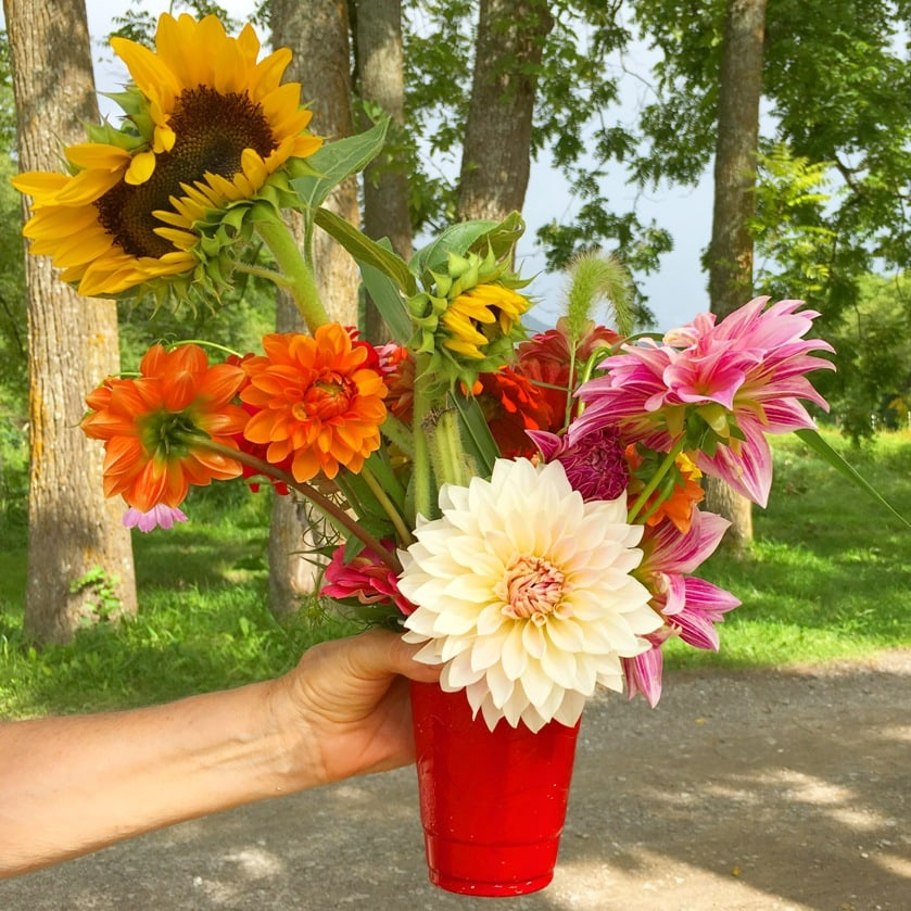 Flying Cloud Farm offers guests the chance to pick organically grown flowers from their wildflower fields.