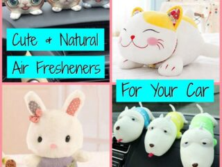 Natural Air Fresheners That Kill Mold and Remove Odors From Your Car