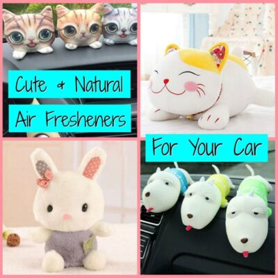 Cute Natural Air Fresheners for the Car