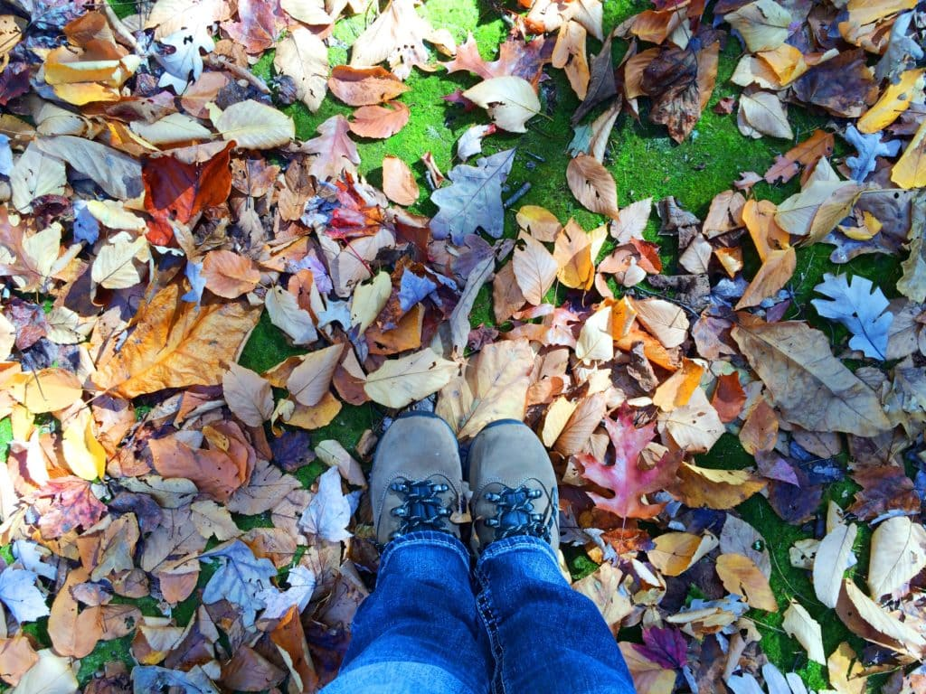 how to prepare your garden for winter get green be well