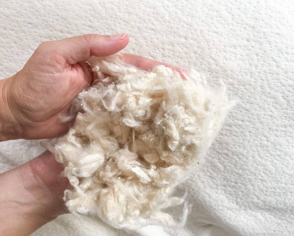hands holding kapok and natural latex pillow stuffing
