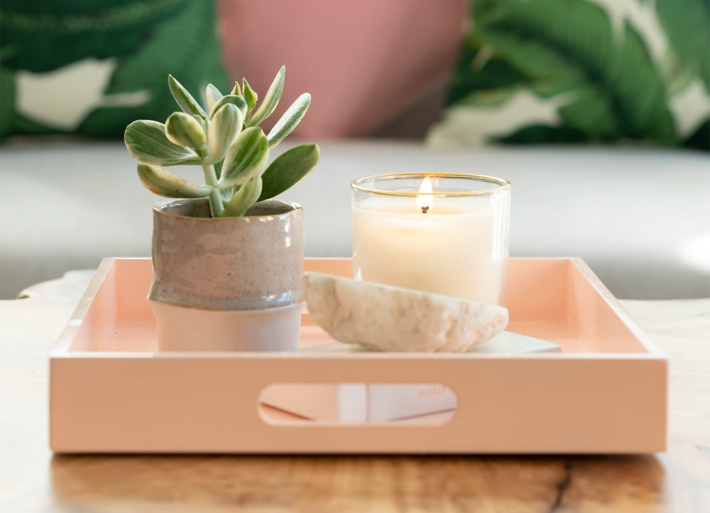 succulent plant candle in tray on living room table