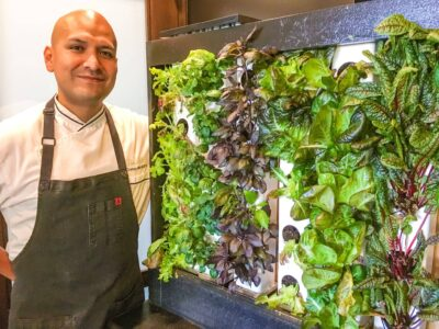 Four Seasons Orlando Living Wall + Adobo Rub Recipe