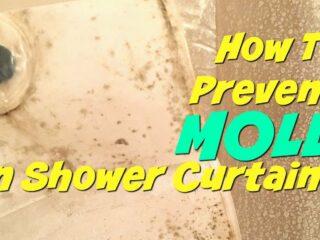 mold on shower curtain