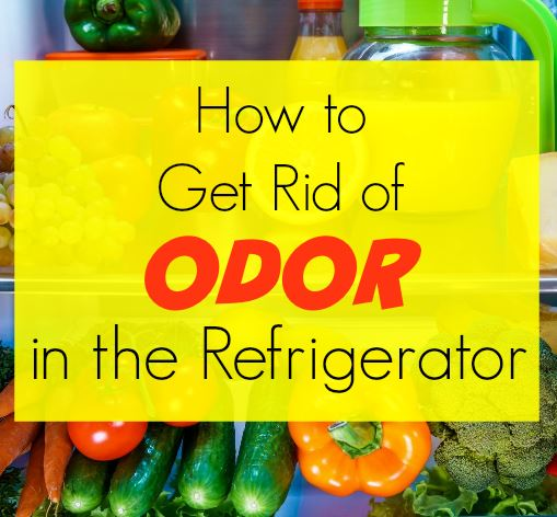Stinky Fridge? Here's how to get rid of odor in a refrigerator. Natural, non-toxic, safe and chemical-free ways to clean and freshen your freezer and fridge. Easier than baking soda. Cheaper, too!