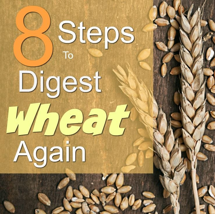 Think you can't eat wheat? You might be surprised to find you can reboot your body to eat wheat and stay healthy! Read the 8 simple tips on how to start digesting wheat again for healthy eating.