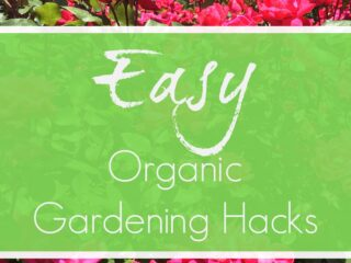 Super easy organic gardening hacks! Save time and save money with these quick ideas for a natural garden.