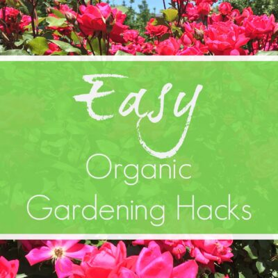 Easy Organic Gardening Hacks
