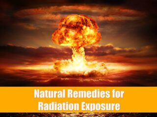 Nuclear bombs and radiation exposure are a real threat in our modern world. Emergency kits, disaster preparedness and knowledge of natural remedies can help deal with the effects of nuclear radiation and contaminants. Create a long-term emergency kit with these products.