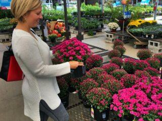 prAna Sweater while picking flowers