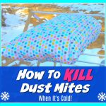How to Kill Dust Mites Naturally with Cold