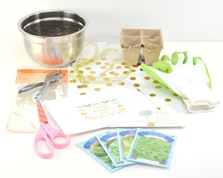 DIY supplies for mothers day garden gift soil lettuce packs, scissors gift bag gardening gloves seed starters hole punch silver bowl filled with soil