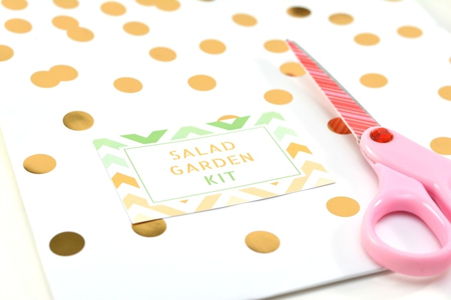 Salad Garden Kit printable gift tag next to scissors on top of a polka dot gift bag