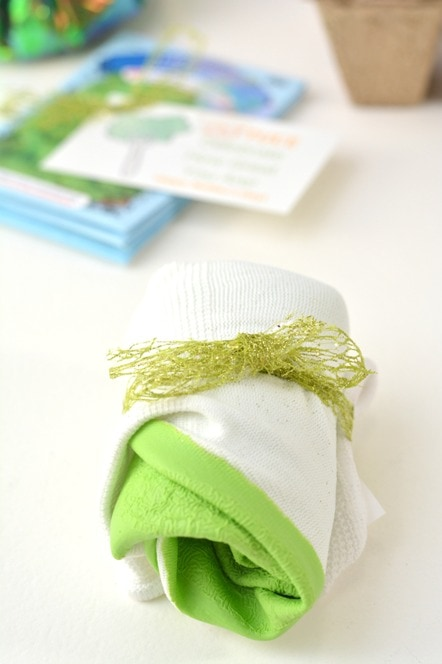garden gloves rolled up and tied with ribbon with lettuce seed packets