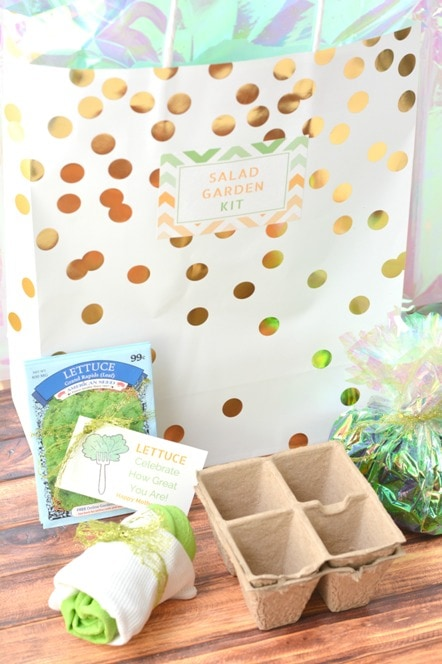 Mothers Day garden gift bag with lettuce packets cardboard seed starters soil and gardening gloves