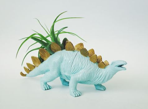 plastic dinosaur painted baby blue with gold spikes and air plant growing out of back