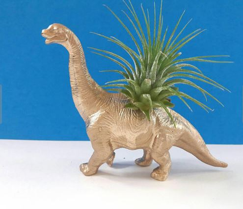 gold spray painted dinosaur with green air plant in back against blue backdrop