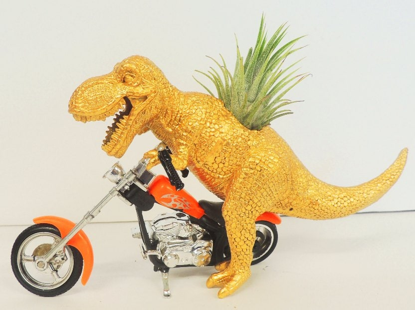 gold plastic dinosaur riding a motorcyle with an air plant growing out of back