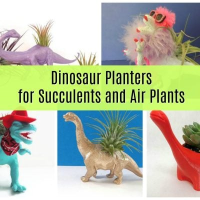 Cute Dinosaur Planters for Succulents and Air Plants