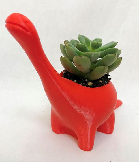 red plastic dinosaur with green suculent plant growing out of it
