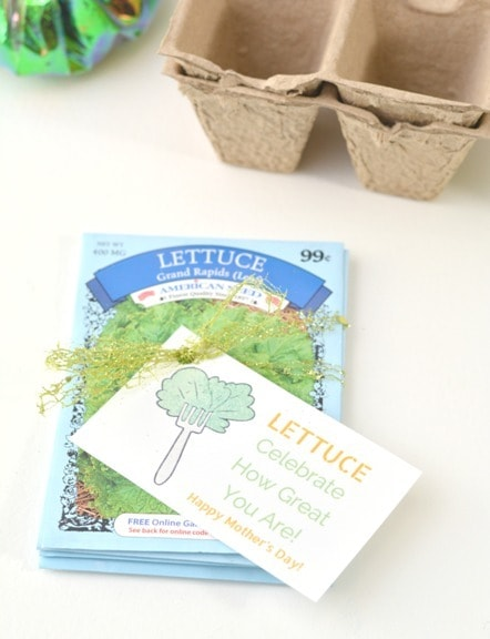 packs of lettuce seed packets tied together with bow and lettuce celebrate how great you are for mothers day gift tag tied on top