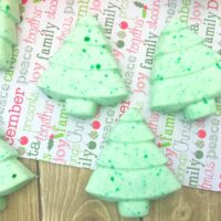 Natural Christmas Tree Bath Fizzies