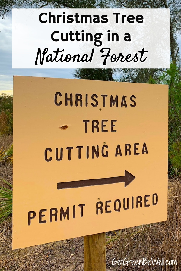 Christmas Tree Cutting National Forest Permit Sign