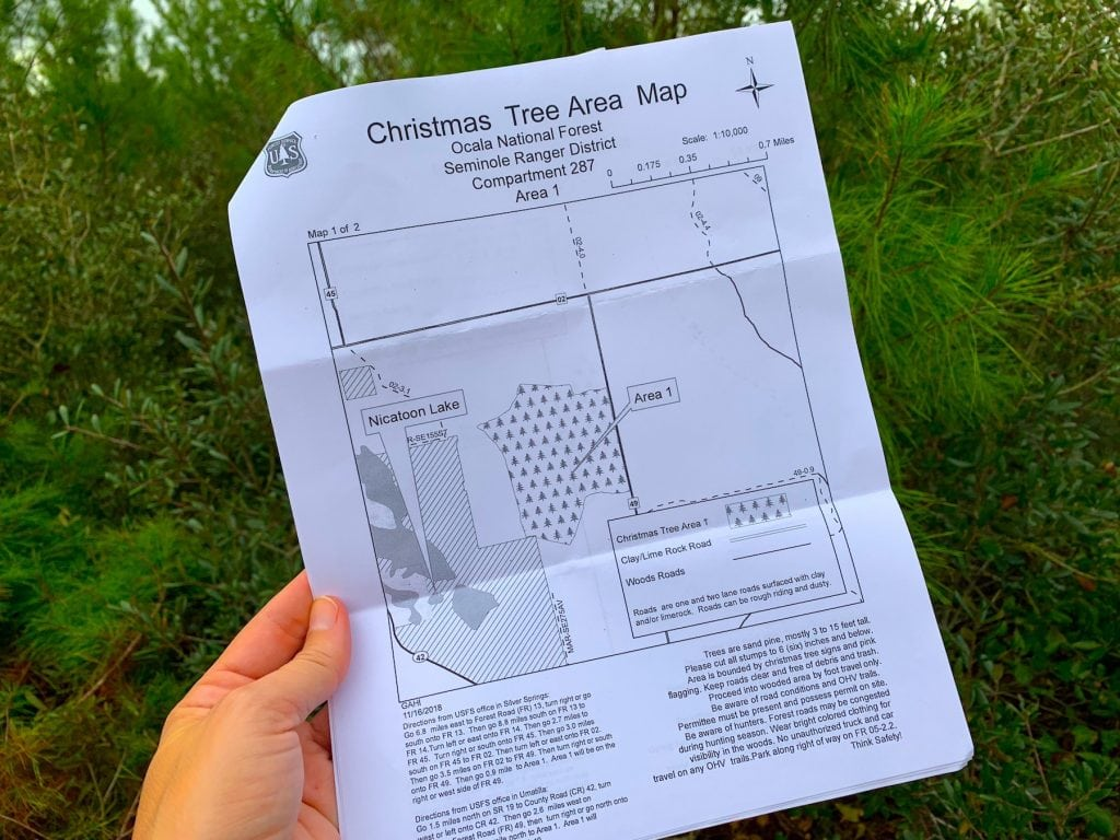 Christmas Tree Cutting Permit Ocala National Forest Map