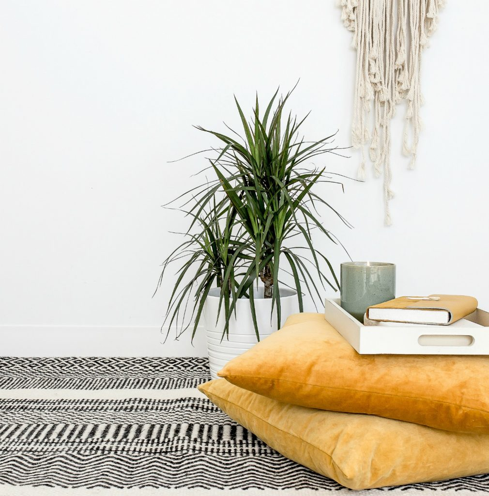 houseplant in white pot on floor black patterned rug pillows stacked