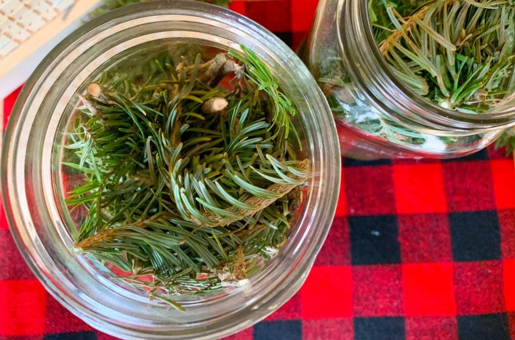 pine branches in mason jar against black and red buffalo check fabric to make scented vinegar
