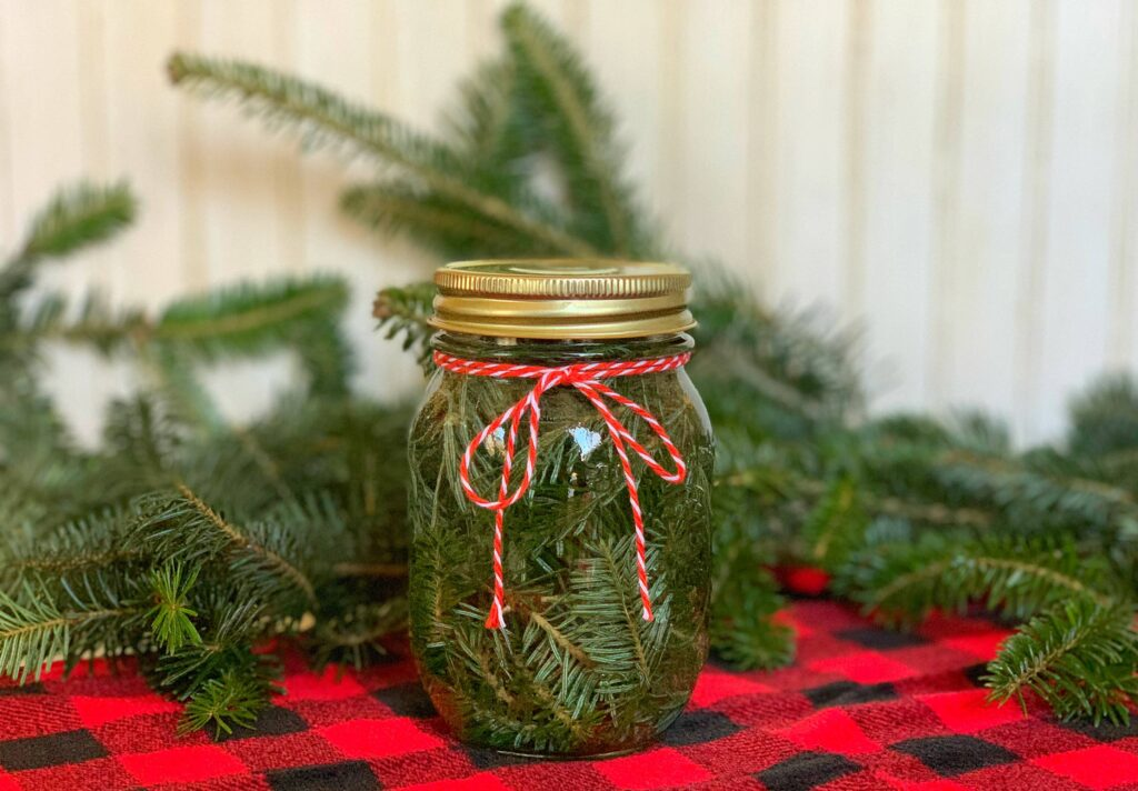 Pine Scented Vinegar in mason jar against red and black buffalo check fabric for Cleaning
